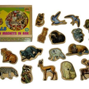 Animal Magnets In A Box