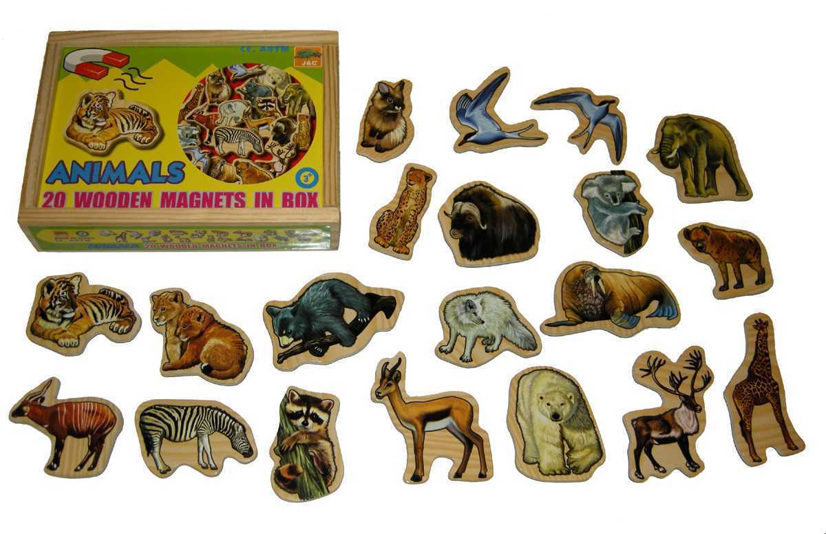 Animal Magnets In A Box of 20