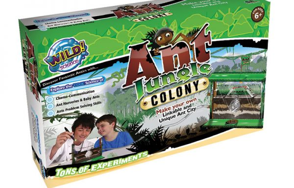 Large Ant Jungle